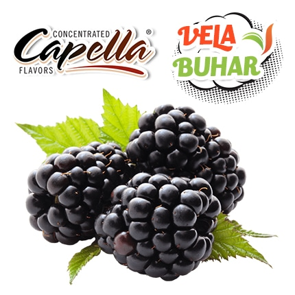 capella-blackberry