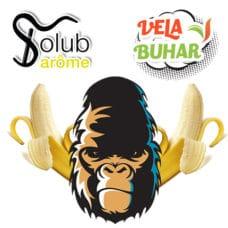 solub-arome-gorilla-v2