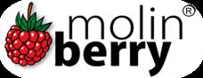 MOLİNBERRY AROMALARI