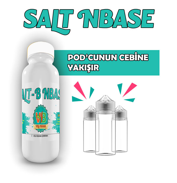 salt-nbase-2
